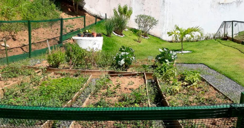 Horta no Vivace Cabula VI